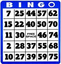 Flash Bingo Sites