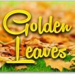 BingoForMoney Golden Leaves Bonus