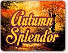 Autumn Splendor Promo At BingoCanada