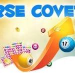 USA Bingo Sites Reverse Coveralls Tournaments