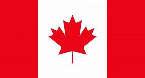Where Can I Play Online Bingo Games For Money From Canada? BingoCanada