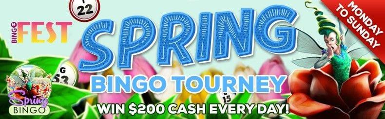 daily rewards bingofest casino